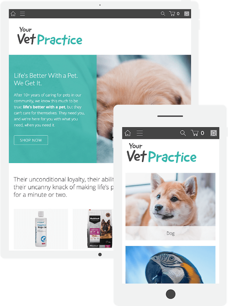 Create an online veterinary store